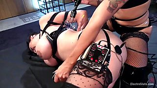 Daisy Ducati's Lesbian Electro-Dungeon.