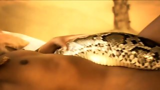 The Sensual Snake of india