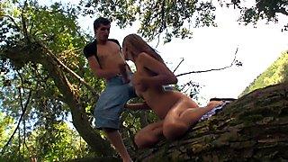Fucking Up A Tree